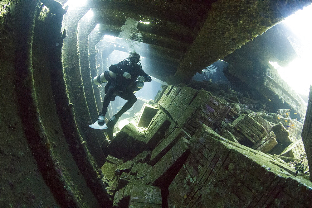 Diving the wreck of The Giannis D, Red Sea, Egypt, North Africa, Africa - 934-690