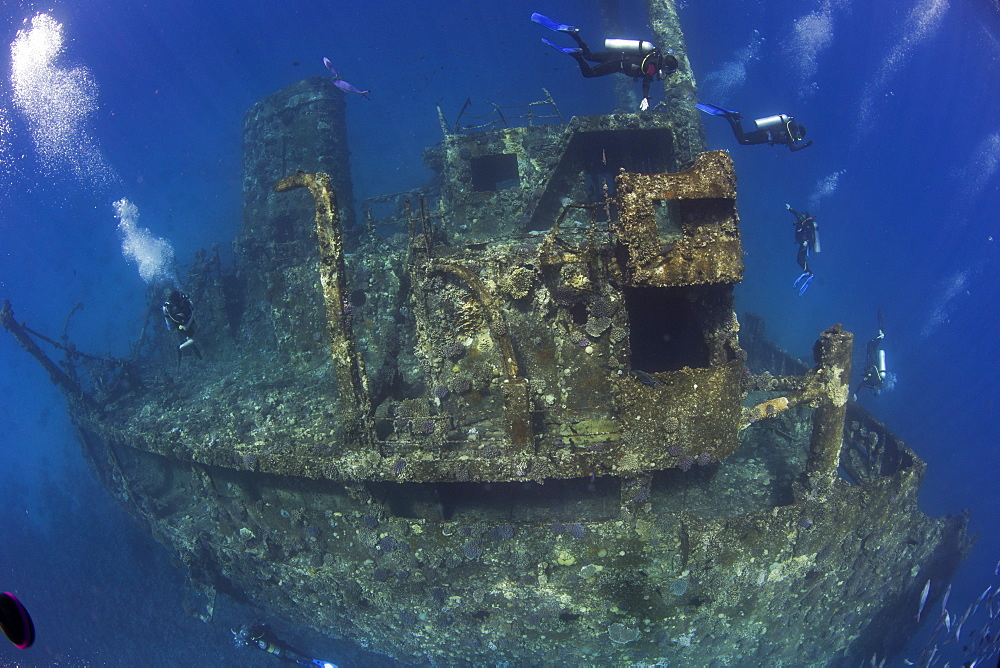 Diving the wreck of The Giannis D, Red Sea, Egypt, North Africa, Africa - 934-695
