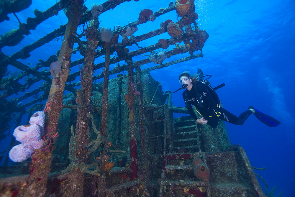 Wreck diving on the Hamel Wreck in the Bahamas, West Indies, Central America - 934-706