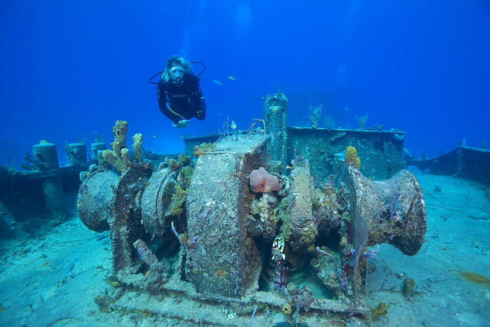 Wreck diving on the Hamel Wreck in Bahamas, West Indies, Central America - 934-709