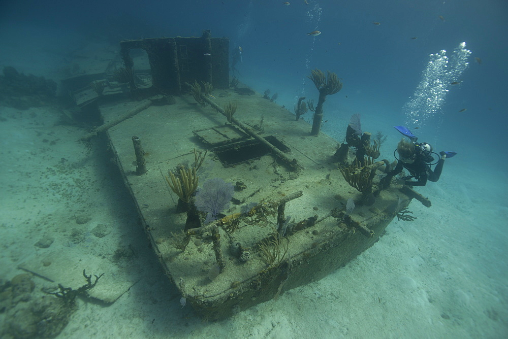 Barge wreck in the Bahamas, West Indies, Central America - 934-713