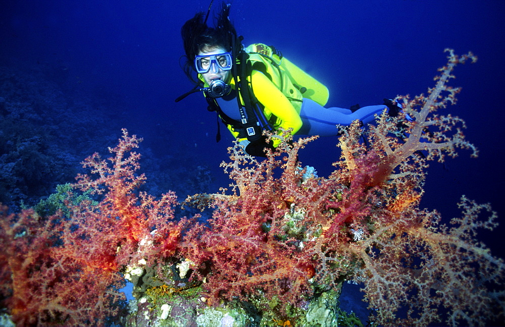 Diver enjoying reef diving in Barbados, Caribbean