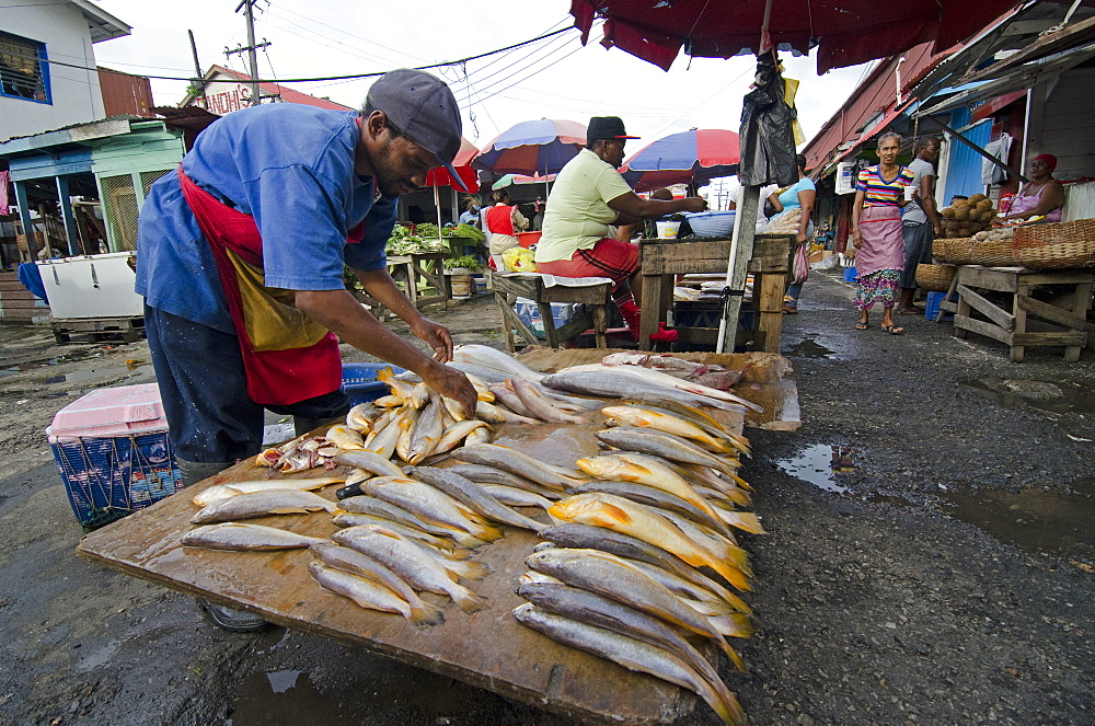 Fish stall in Stabroek Market, Georgetown, Guyana, South America