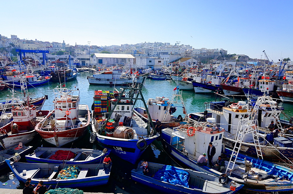 Fishing harbour, Tangier, Morocco, North Africa, Africa - 971-121