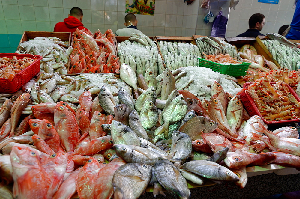 Freshly caught fish displayed in Tangier fish market, Tangier, Morocco, North Africa, Africa - 971-125