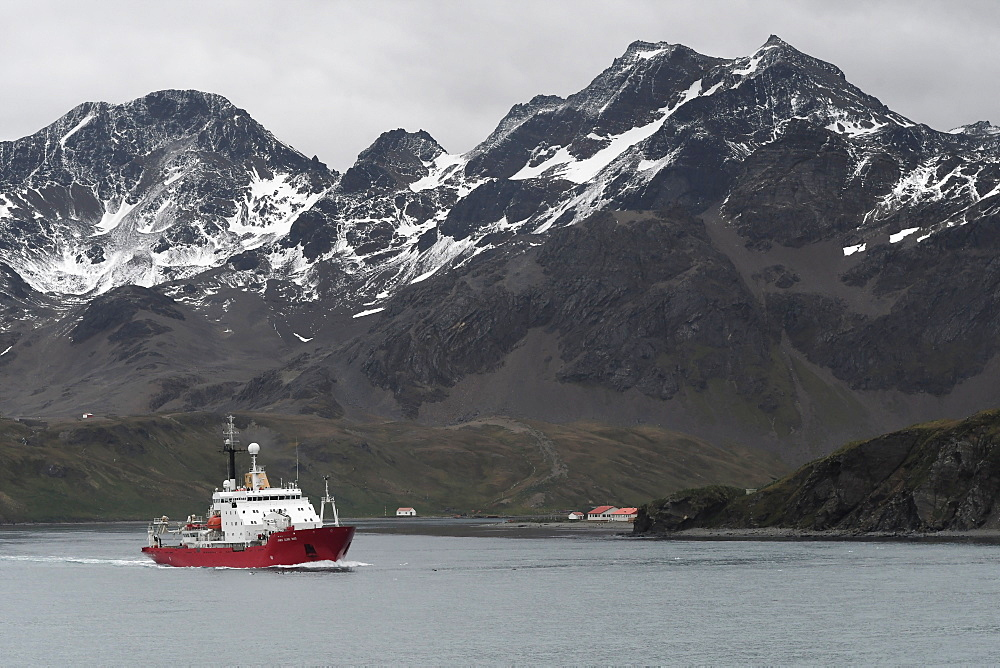 British Antarctic Survey's research vessel James Clark Ross leaving King Edward Point and Allardyce Range behind, South Georgia, Polar Regions