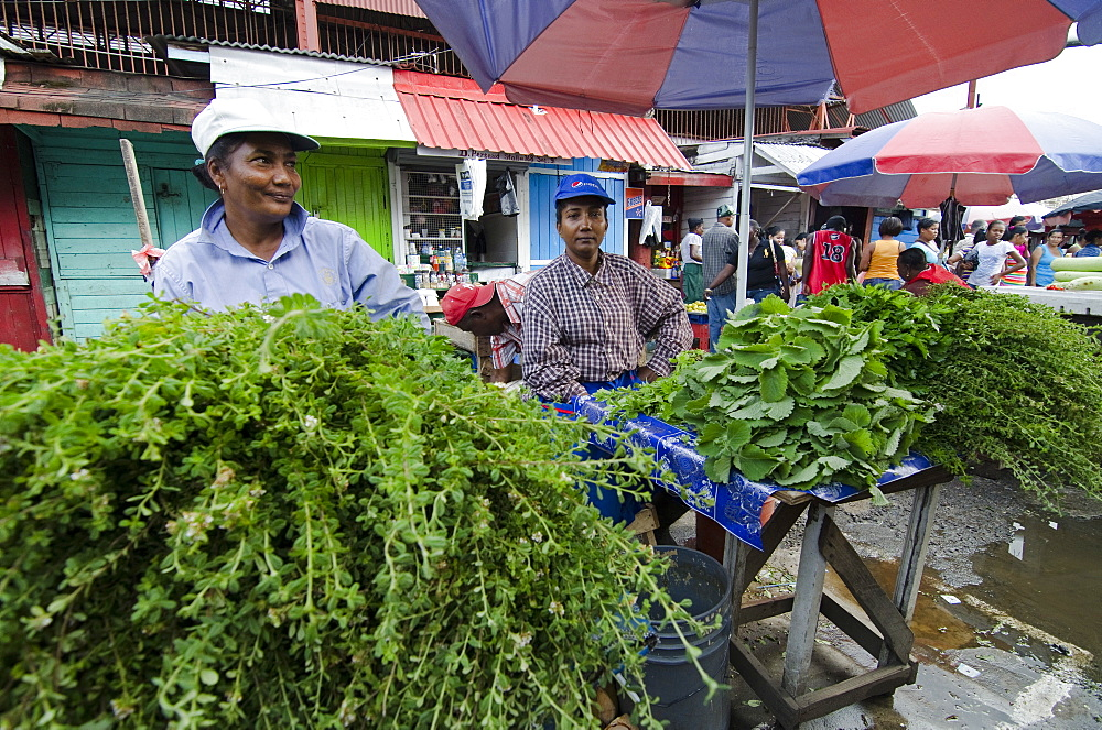Herb sellers in Stabroek Market, Georgetown, Guyana, South America