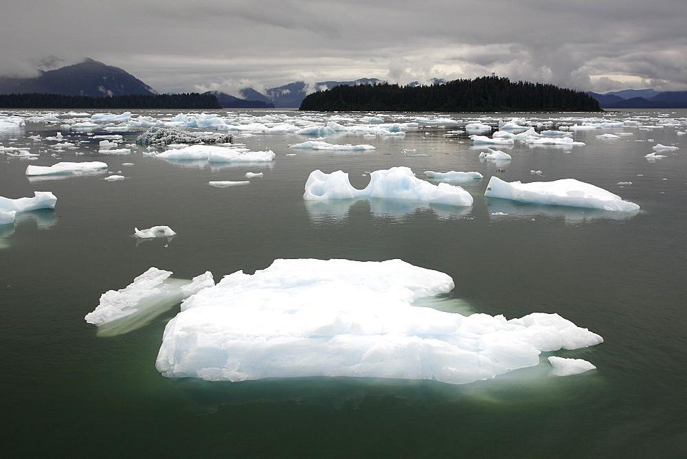 Calved icebergs and bergy bits fallen from the Le Conte Glacier in Le Conte Bay, Southeast Alaska, USA.