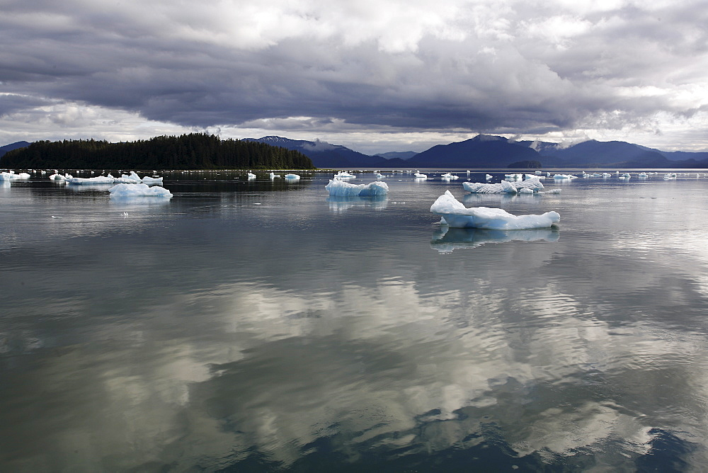Calved icebergs and bergy bits fallen from the Le Conte Glacier in Le Conte Bay, Southeast Alaska, USA. Le Conte glacier is the southernmost tidewater glacier in the northern hemisphere.