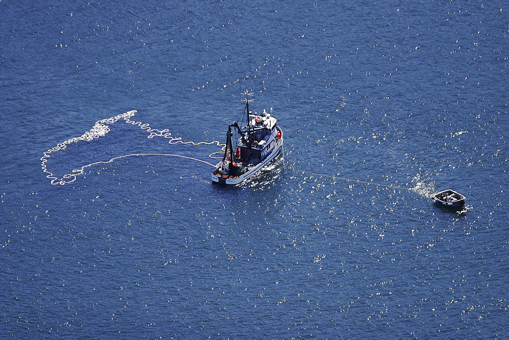 Aerial view of the Alaskan purse-seiner fishery for wild salmon off Point Augustus, Chichagof Island, Southeast Alaska, USA. Note how the small tender keeps the larger ship from drifting down on its own net as the net is retrieved onboard.