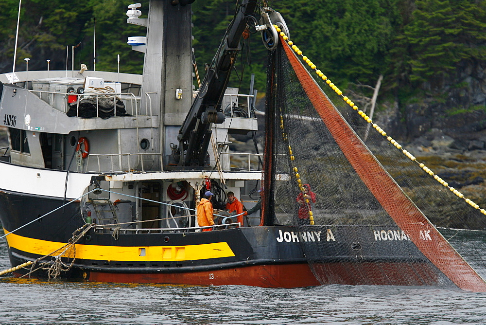 Purse-seine fisherman working off Point Augusta on Chichagof Island, Southeast Alaska, USA. Pacific Ocean. THese fisherman are testing the waters for a June king salmon run in Chatham Strait. No model or property releases.