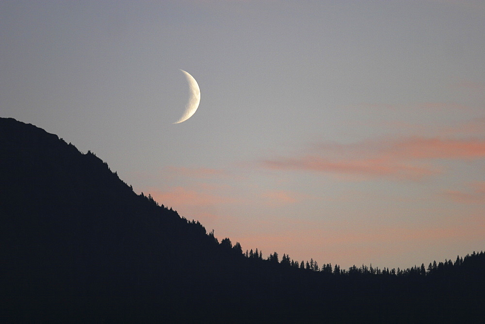 A waxing moon over the Tongas National forest in Southeast Alaska, USA.