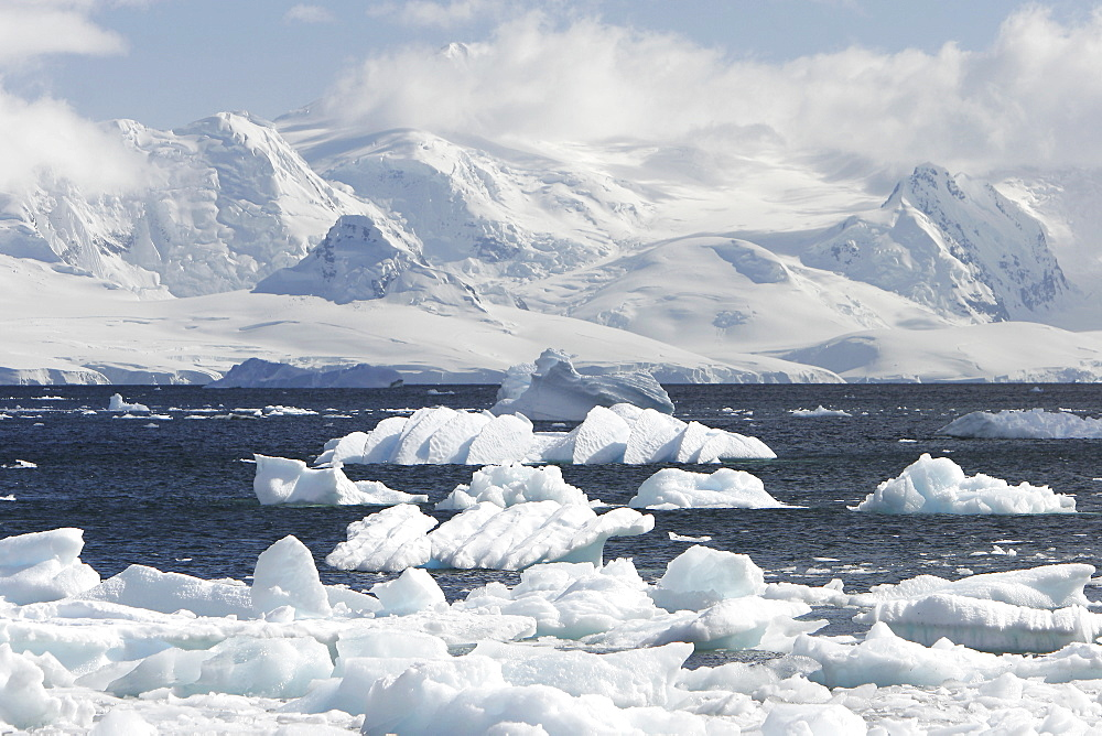 Mist covers the glacierand icebergs and bergy bits lill the bay in Neumayer Channel, Antarctica.