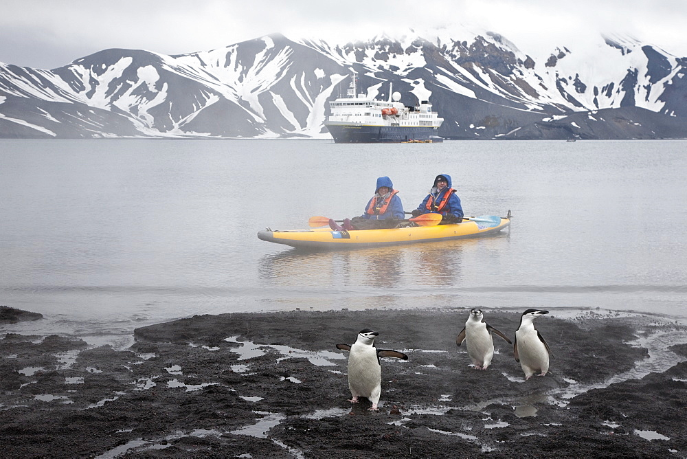 Guests from the Lindblad Expedition ship National Geographic Explorer kayaking in and around the Antarctic Peninsula in the summer months.