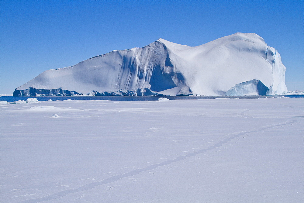 Huge tabular icebergs and smaller ice floes in the Weddell Sea, on the eastern side of the Antarctic Peninsula
