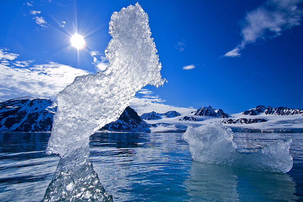 Ice in all of its myriad forms in the Svalbard Archipelago, Norway. MORE INFO Global climate change is affecting the formation and duration of ice in all its form here in Svalbard. - 979-8784