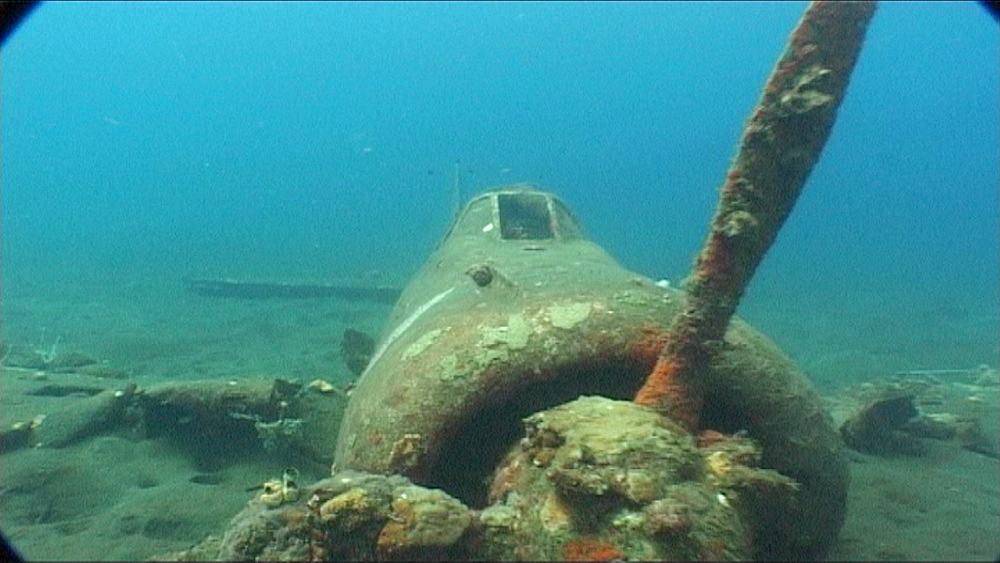 WWII plane on sea floor - pilot swam to shore.  Kimbe Bay, West New Britain, PNG - 981-475