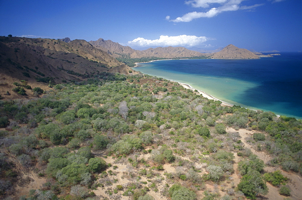 Aerial shot of coastline, Komodo Bay. - 981-66