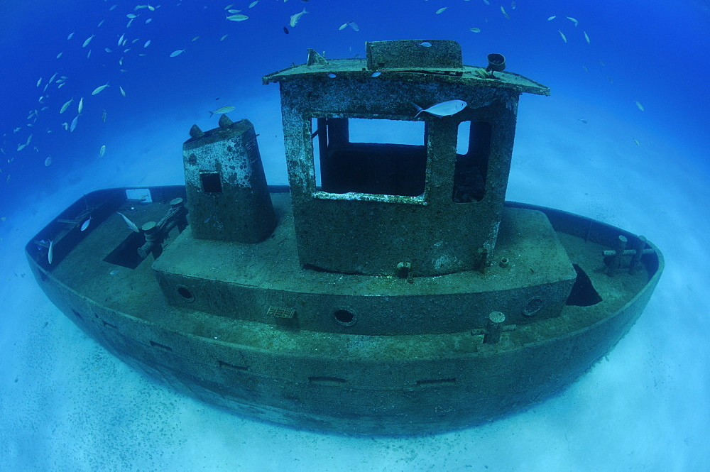 Wreck of the ''Blue Plunder''- Bahamas