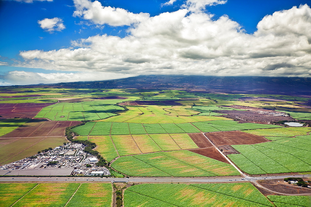 The Valley of Sugar - Maui's controversial 37,000 acre sugar cane fields - set to burn when harvesting, creating enormous smoke, ash and dust, Maui, Hawaii, USA - 983-562