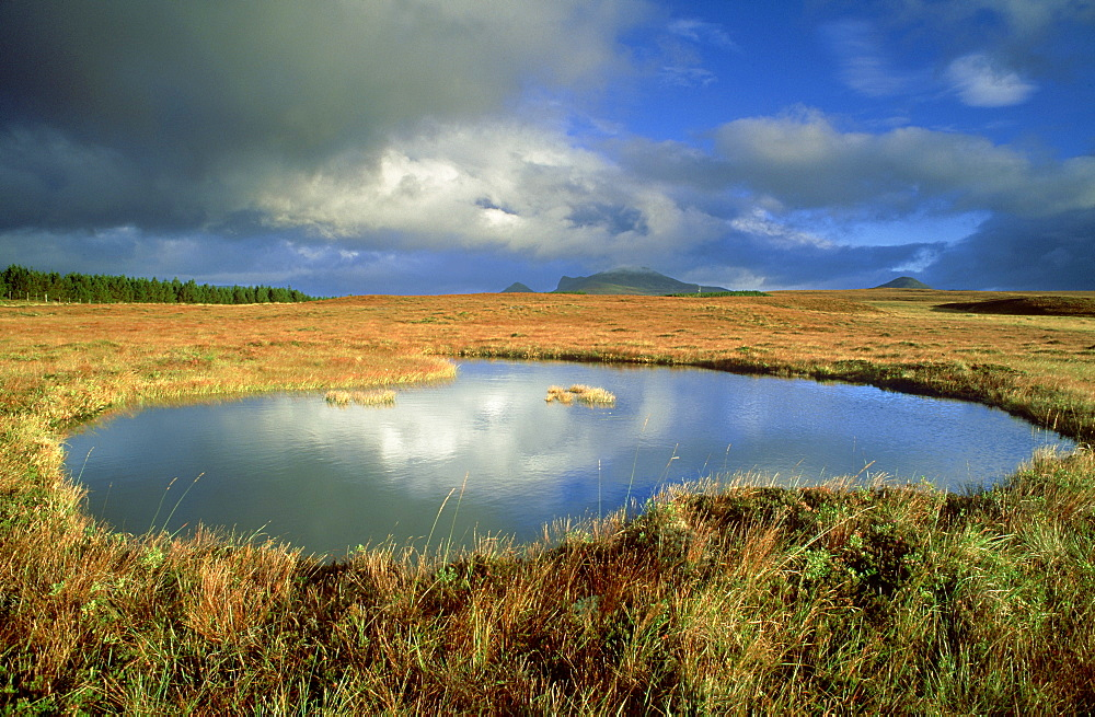 blanket bogs pool in flow country october 2001. altnaharra, sutherland, scotland - 987-143
