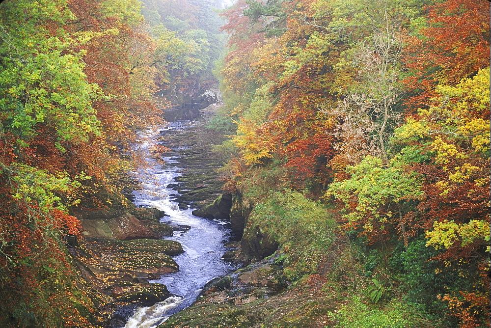 scottish rivers north esk gannochy gorge edzell, angus, scotland