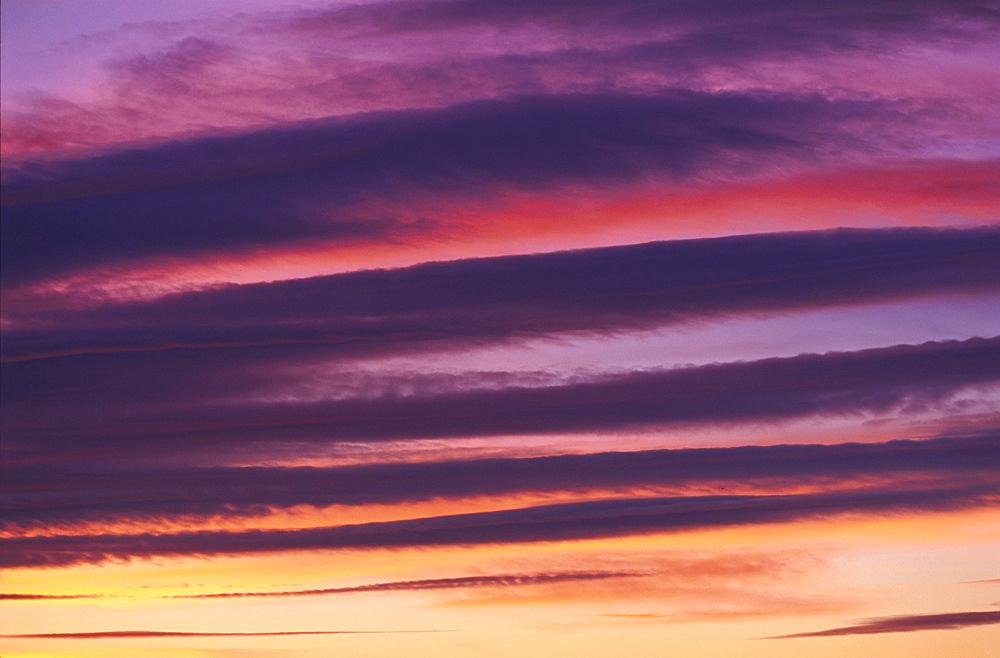 clouds, sunset, january 2002, angus, scotland