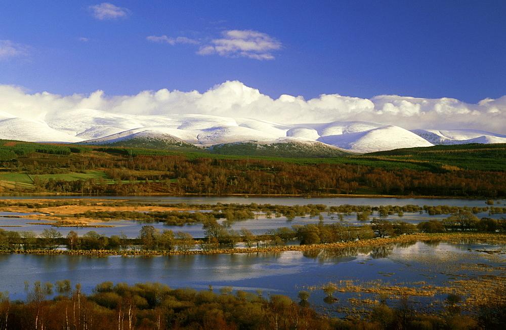 scottish wetlands: insh marshes near kingussie strathspey, scotland - 987-63