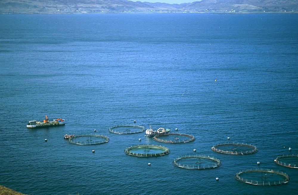 Salmon fish farm. Hebrides, Scotland