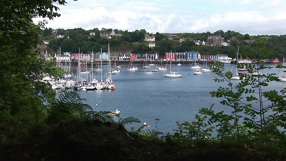Scenic harbour. Tobermory. Mull. Scotland - 988-491