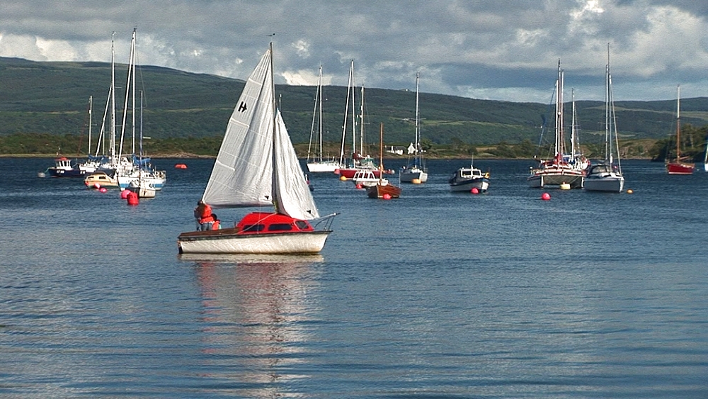 Scenic dinghy in harbour. Tobermory. Mull. Scotland - 988-494
