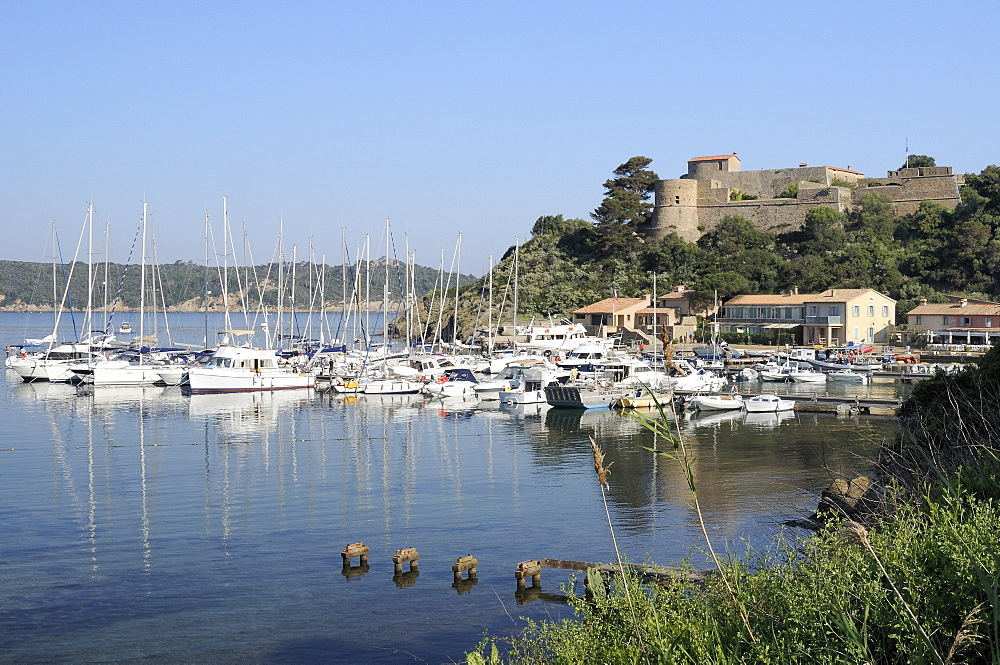 Sailing yachts and other boats moored at Port Cros Island in front of Fort de l'Eminence castle, Hyeres archipelago, Var, Provence, Cote d'Azur, France, Europe