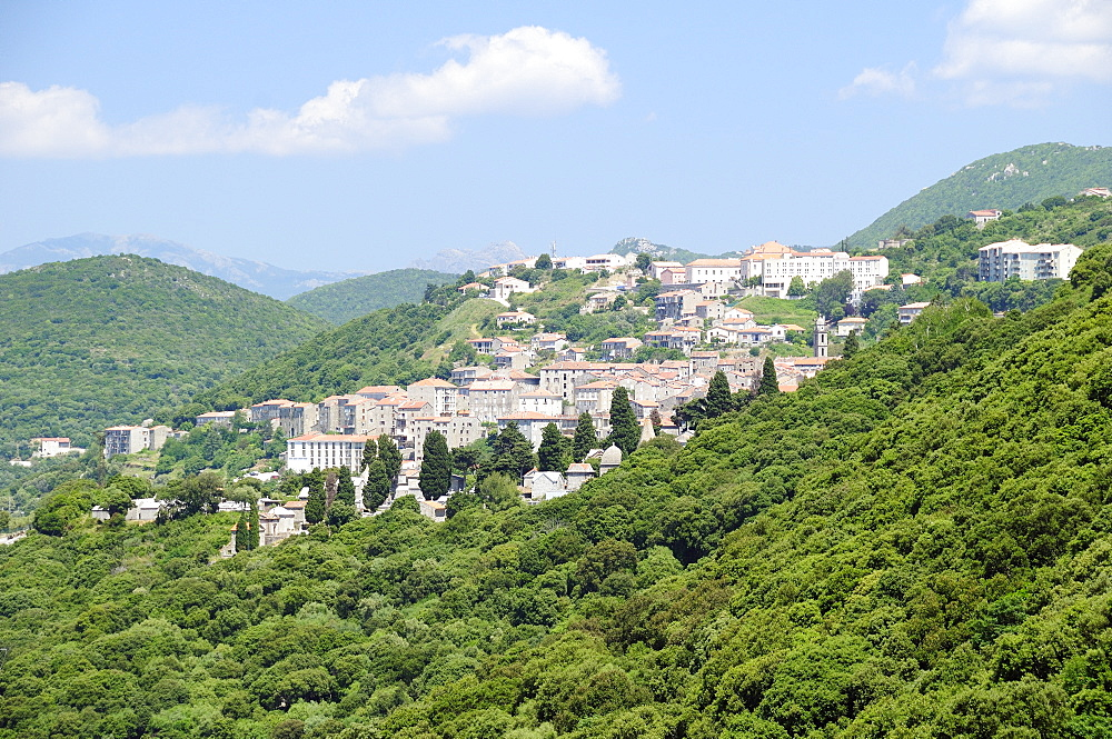 View of Sartene town in wooded mountainous setting, Corsica, France, Europe