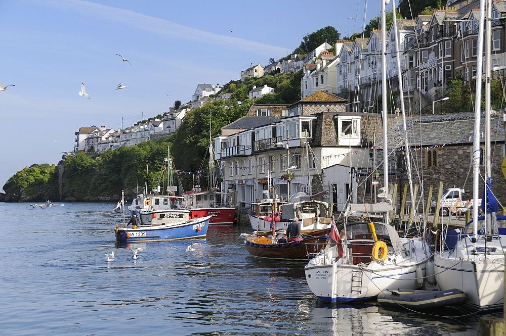 Fishing boat coming in to moor alongside other fishing boats and sailing yachts in Looe harbour, Cornwall, England, United Kingdom, Europe