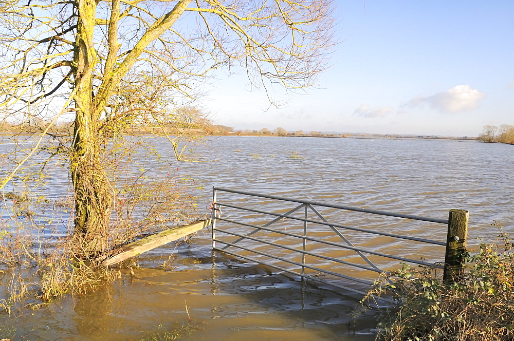 Flooded gateway and pastureland on West Moor near Hambridge on the Somerset Levels after weeks of heavy rain, Somerset, England, United Kingdom, Europe - 989-317