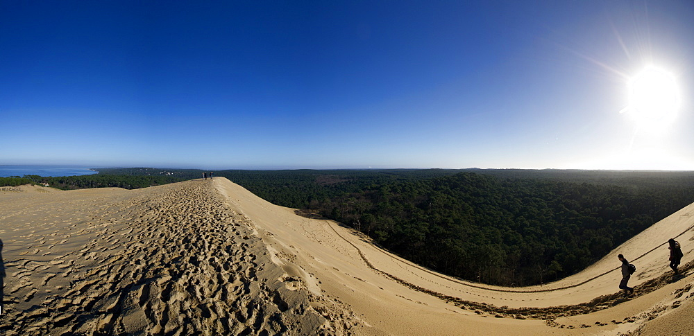 Pilat Dune in Test-de-Buch, at 110 m high, the highest sand dune in Europe, Nouvelle Aquitaine, France, Europe - 1061-42