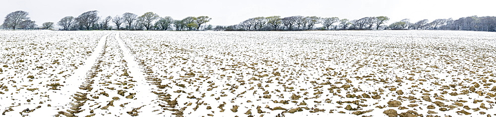 Light dusting of snow on ploughed field, West Sussex, England, United Kingdom, Europe - 1102-48