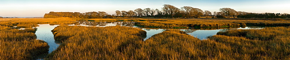 The image of the world is represented in the shape of the creek weaving around the marshy edges of Chichester Harbour, West Sussex, England, United Kingdom, Europe - 1102-51