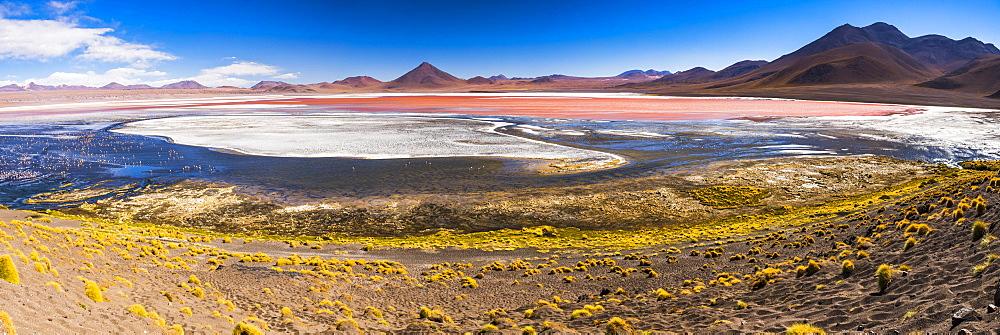 Laguna Colorada (Red Lagoon), a salt lake in the Altiplano of Bolivia in Eduardo Avaroa Andean Fauna National Reserve, Bolivia, South America