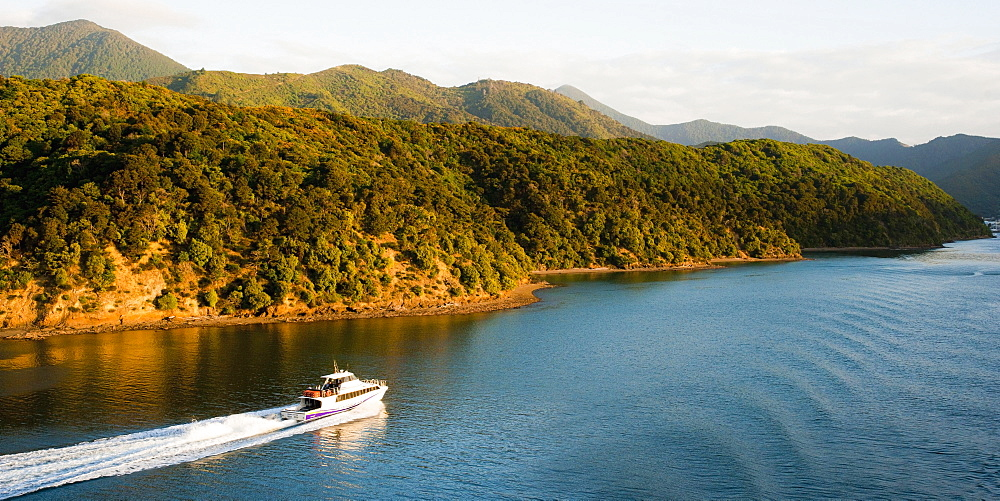 Speed boat in Queen Charlotte Sound, Picton, Marlborough Region, South Island, New Zealand, Pacific