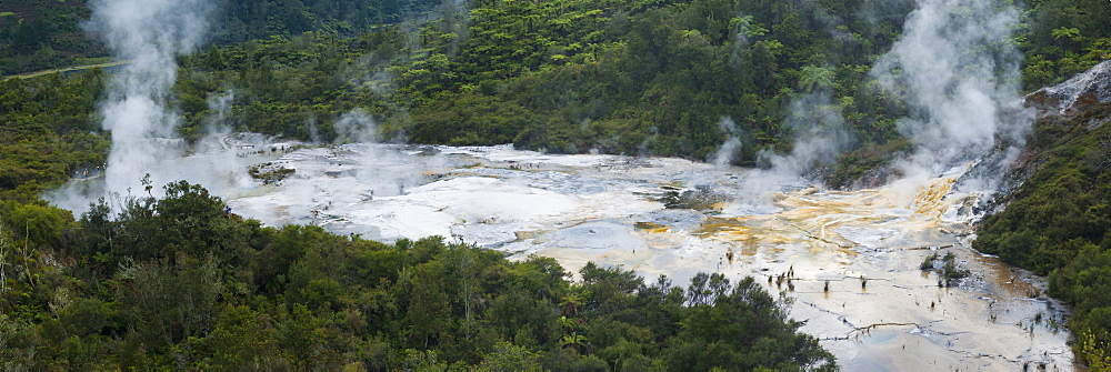 Steaming geothermal area at Orakei Korako Thermal Park, The Hidden Valley, North Island, New Zealand, Pacific