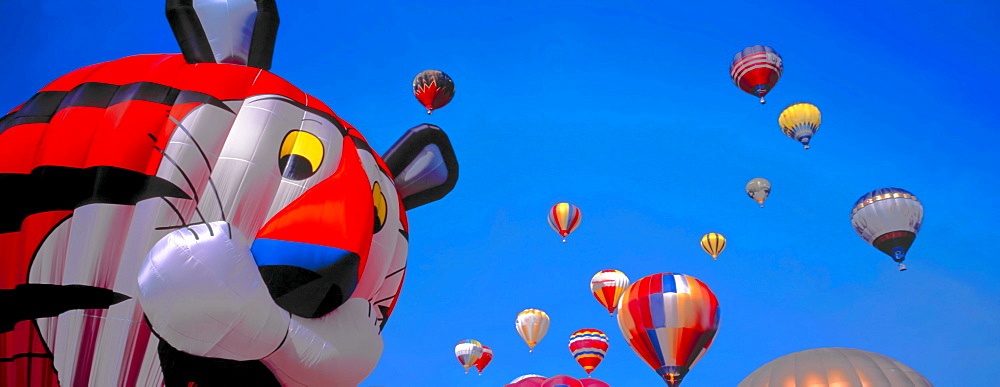 Balloon competition, Bern, Switzerland