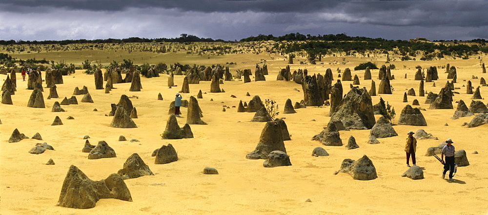 The Pinnacles near Perth, West Australia, Australia