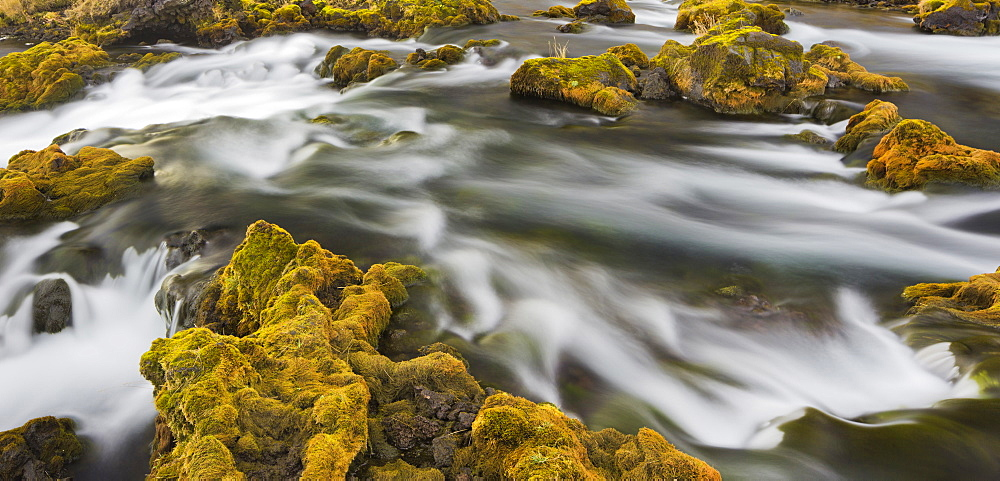 Moss covered stones near Foss, Deverghamrar, South Iceland, Iceland