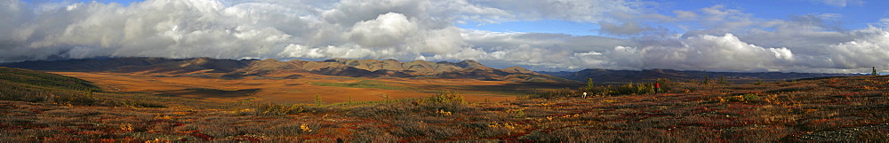 Hiker on the Arctic Circle along the Dempster Highway, Yukon