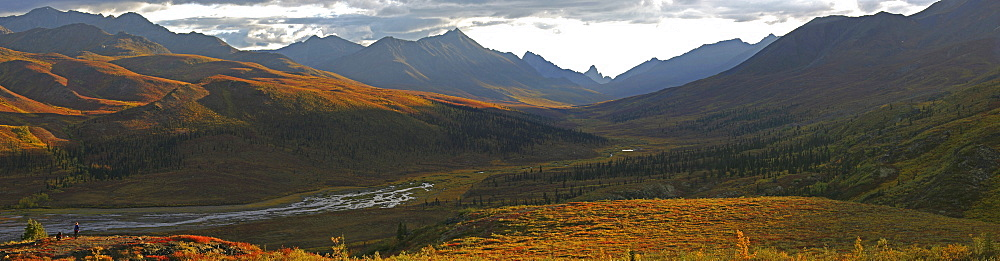 Panoramic of Tombstone Lookout in Autumn, Klondike Valley, Dempster highway, Yukon