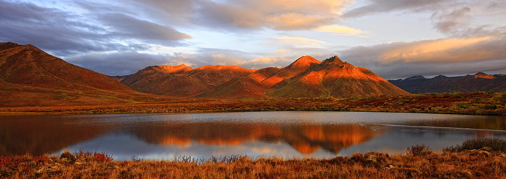 Panoramic of sunrise over Mount Adney reflected in a pond in fall, along the Dempster Highway, Yukon