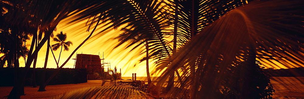 Hawaii, Big Island, Pu'uhonua O Honaunau (Place of Refuge), Palms and heiau silhouetted against sunset.