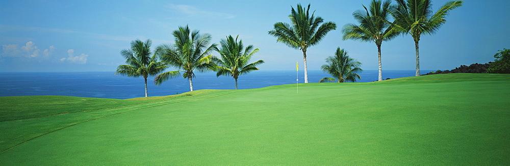 Hawaii, Big Island, Kona Country Club, Mauka Front hole#2, panoramic