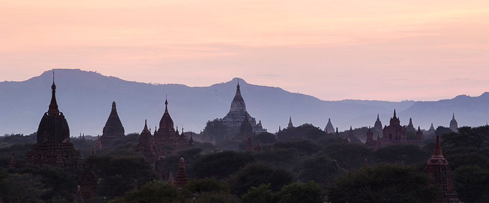 View towards Shwesandaw temple, pagodas and stupas at sunset, Bagan (Pagan), Myanmar (Burma), Asia - 1170-132